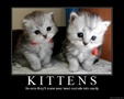 preview image for cutekittens.jpg