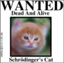 preview image for schroedingers-cat.png