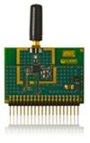 RZ502.jpg