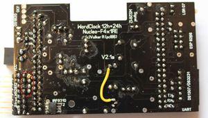 NS Bug-2.jpg